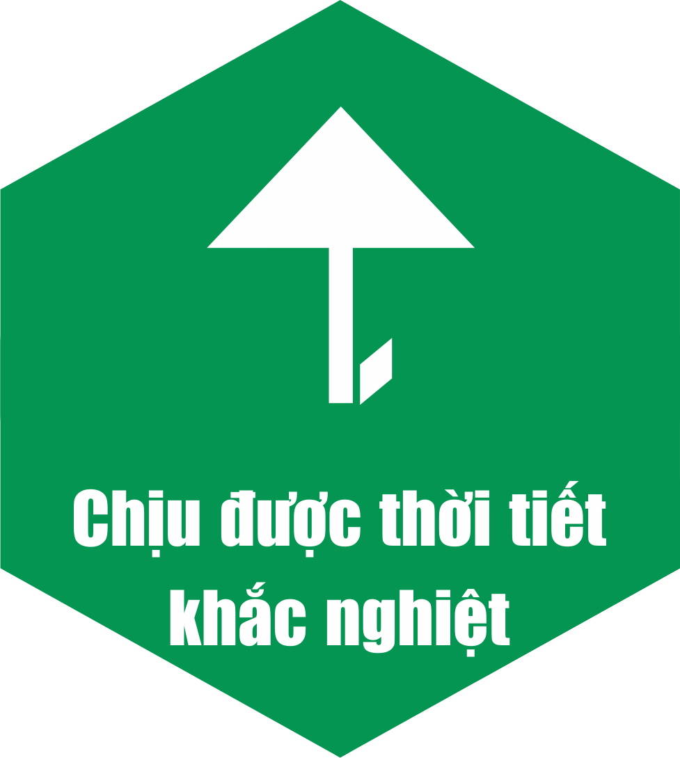 Timberman chịu được khí hậu khắc nghiệt của Việt Nam